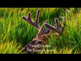 Rammstein - Waidmanns heil HD Lyrics Текст песни Литературный перевод