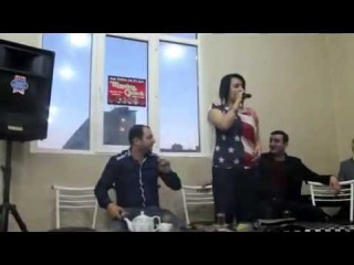 Zarina,Elmeddin Avaz,Mehdi Masalli,Fariz Cempion,Vusal,Ruslan,Sebuhi - Agla gozel 2014 Pavil