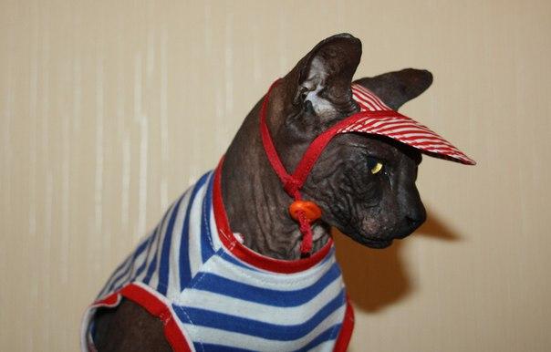 Нутрам Сухой Корм для Собак и Щенков (Канада) - купить в