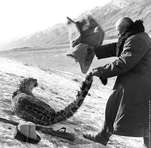 Фантастическое фото охотника из Киргизии