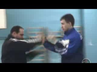 Китайский бокс богомола в традиции Мастера Ма Ханьцина