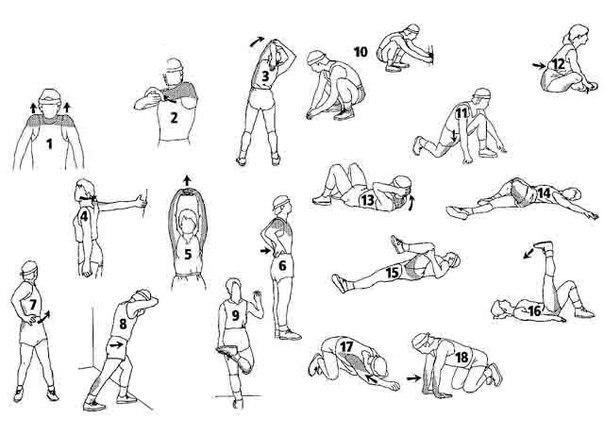 эластичность мышцам.