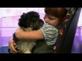Зрители Первого канала помогают детям, которые нуждаются в дорогостоящем лечении - Первый канал