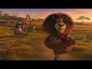 Madly Madagascar Indonesia Full Movie
