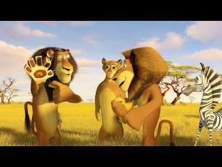 Madagascar: Escape 2 Africa (2008) Full Movie