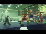 Knockout Boxing - Vine