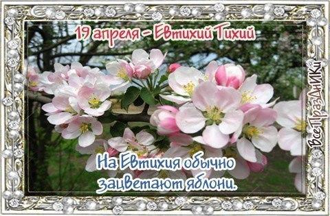 https://pp.userapi.com/c623900/v623900025/10fb33/74YjHPnsQJo.jpg