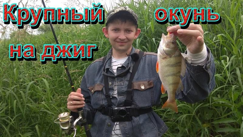 Ловля щуки на джиг. Ловля окуня. Рыбалка на спиннинг в июле