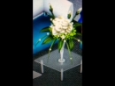 Что на свадьбе Аватария
