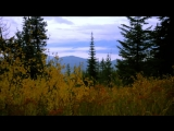 Agalloch_-_Sowilo_Rune__unofficial_video