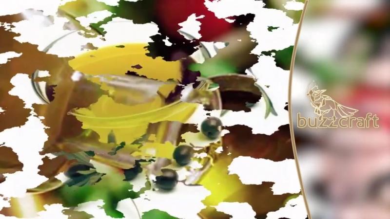 Все что нужно знать об оливках и маслинах Польза и вред оливок Разница маслин и оливок