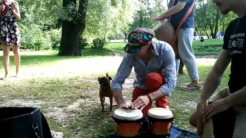 Мартын Обезьяныч из группы Паровоз До Кубы учится игре на перкуссии