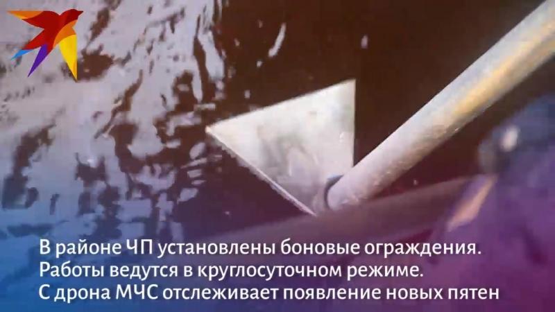 Из Волги в районе Бурнаковки откачали уже больше 200 килограммов нефти