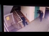 История о том, как подростки ломают лифт в доме Тарская 259 корпус 1 подъезд №3