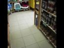 Вот ещё одно забавное видео вам в ленту😉Наслаждайтесь наступающим воскресным вечером🍯☕️ салонбегемот шпицуля померанец пом