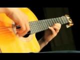 Испанская гитара - ВИРТУОЗ
