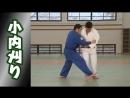 Зацеп стопой изнутри (уроки японского дзюдо)