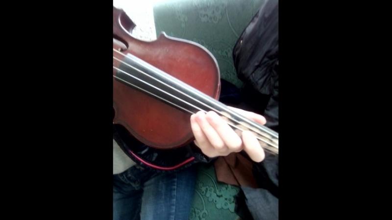 типа скрипачка 2