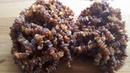 Лечебные бусы из янтаря Массаж для рук