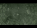Obito Uchiha Kakashi Hatake「AMV」Thousand Foot Krutch