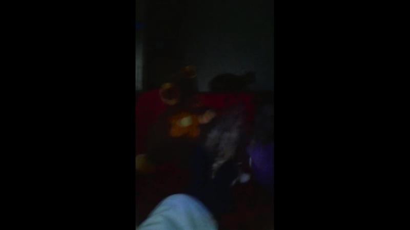 Видео от Вася-бездельнико и лоботрясо