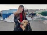 Анна Седокова посетила приют для собак
