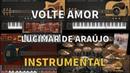 Volte Amor Lucimar de Araújo Instrumental Versão Vithor Hugo Studios