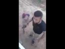 Choquant Les forces soutenues par la Turquie battent un homme et le traînent derrière la voiture dans la campagne d'Alep