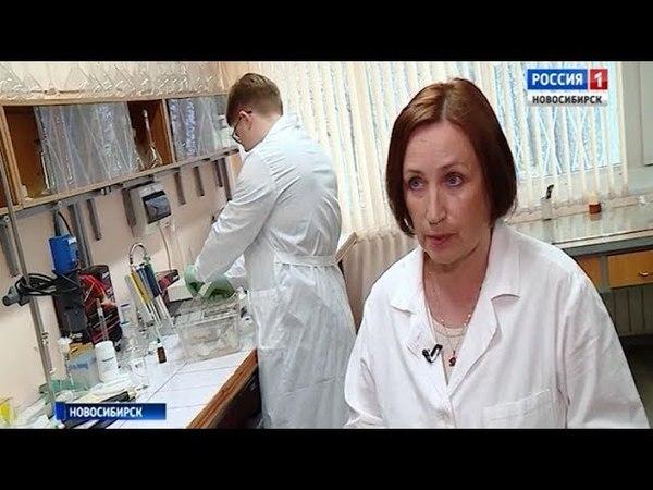 «Вести» побывали в лабораториях новосибирских химиков и увидели технологии будущего