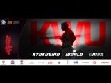 Чемпионат мира по киокусинкай каратэ 2017