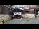Посещения замка Мацуяма на Сикоку Часть II