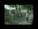 Социальная_реклама_о_бездомных_животных