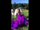 """Фотопроект """"Прогулка с лошадью"""""""