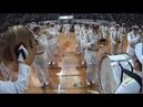 амурские волны 2018. оркестр штаба войск и сил на северо-востоке, Петропавловск-Камчатский