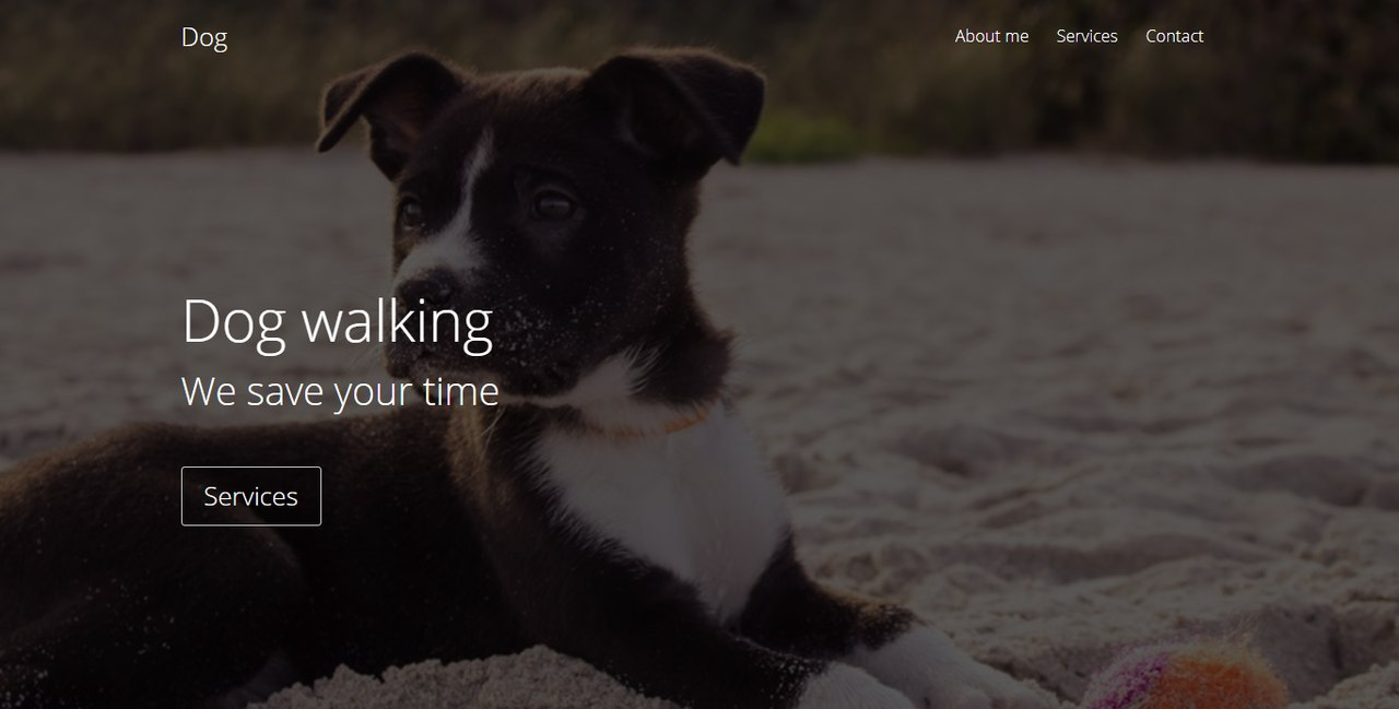 Dog walking Landing Page Template