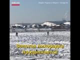 В Якутии — золотая лихорадка