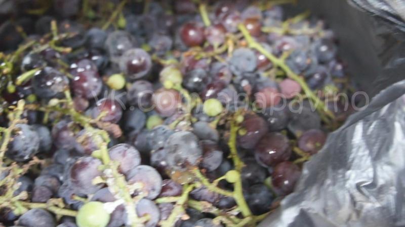 Натуральное домашнее вино в Анапе