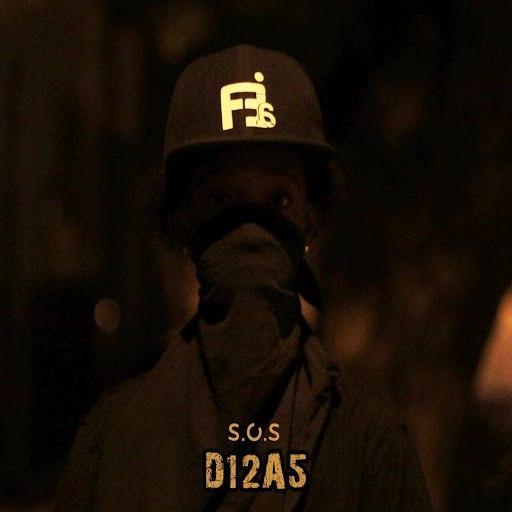 SOS альбом D12a5