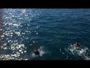Открытое Чёрное море!!