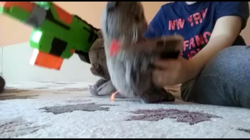 Мой друг отправил видео по ватсапу он снимал 2 мишки в GTA 5