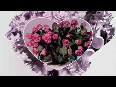 Раймонд Паулс Красивые цветы для вас Brush Effects