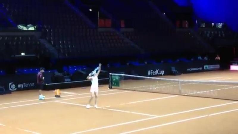 Subito dopo le partite di Fed Cup, la Porsche Arena di Stoccarda ha ospitato Maria Sharapova per un allenamento sotto lo sguardo
