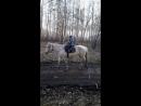 Катались на лошадках
