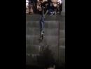 петербуржец прыгнул в мойку