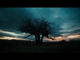 Ozymandias - As Read by Bryan Cranston