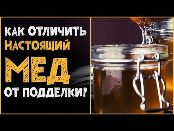 ✅Вот как отличить настоящий мёд от поддельного! Как проверить мёд