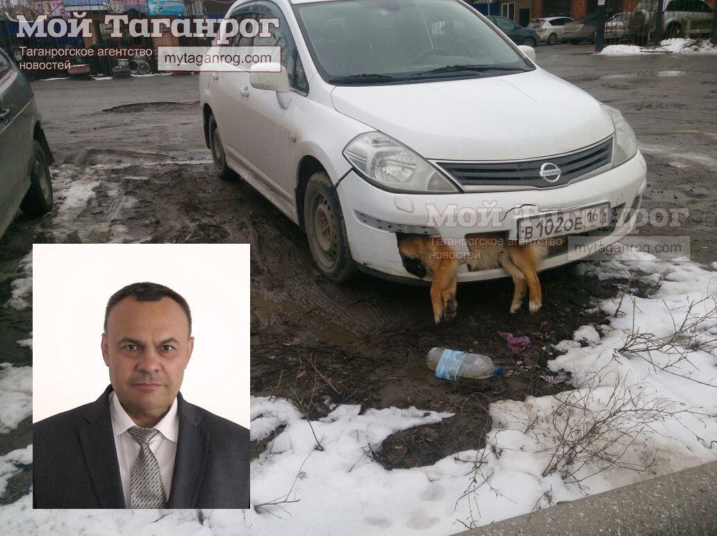 Автомобиль с собакой в бампере оказался депутатским