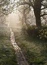 Правильность пути, по которому ты идешь, определяется тем, насколько ты счастлив, идя по нему.