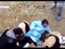 Жестокое нападение панды на человека