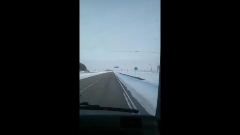 Дмитрий Алиев-Дубинин - Live